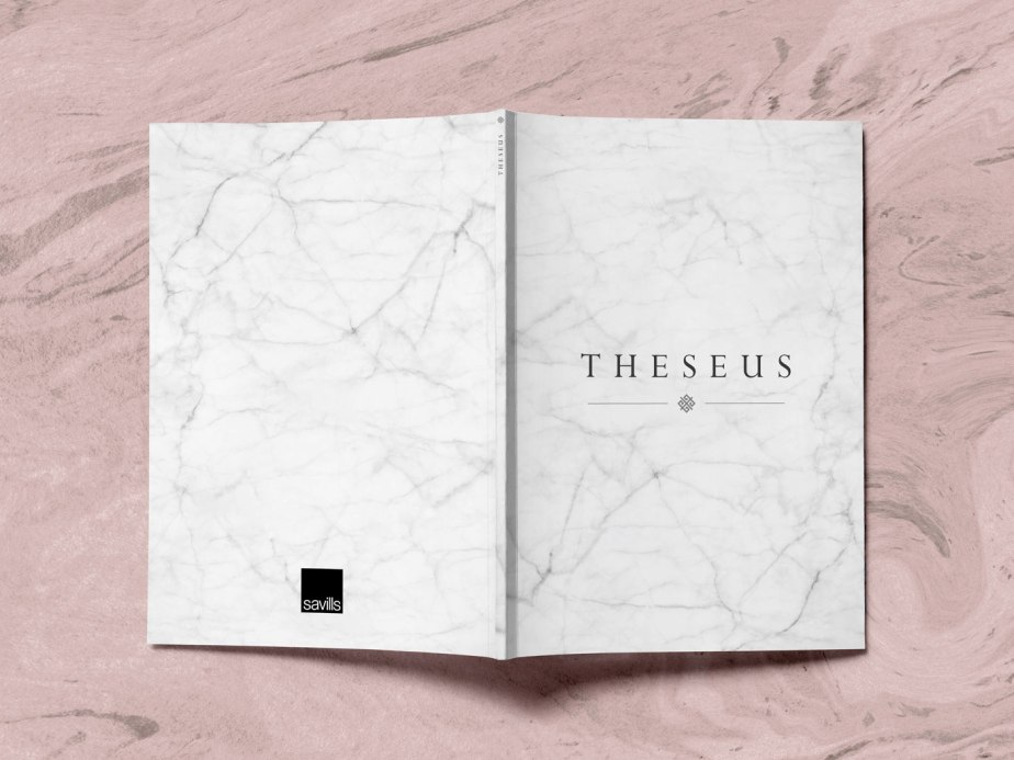 Theseus-Brochure-Covers